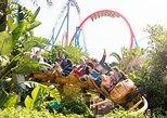 PortAventura Theme Park Ticket with Transport from Costa Brava