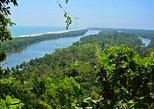 Private Puntarenas Shore Excursion: Tarcoles River Boat Tour at the Jungle