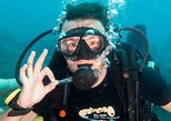 Try Scuba Diving in Koh Tao with Transfer