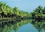7-Day Tour: Spice Lands of Kerala from Kochi