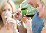8 Hour Napa Valley Wine Tasting Tour from San Francisco