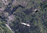 Chonta Condor Watching, Tarawasi and Quillarumiyuc Full-Day Tour from Cusco