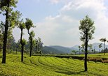 8 Days Serene Kerala Package - Private