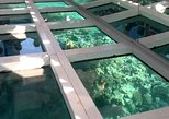 Glass Bottom Boat Tour from Sharm El Sheikh