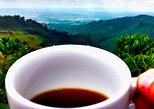 Private Tour: Coffee In the Mountains from Armenia