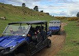 Off-Road 4WD Buggy Adventure from Rotorua