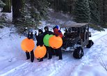 Snow Track and Sledding Tour