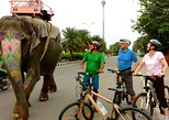 3-Hour Morning Bike Tour of Jaipur