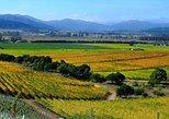Casablanca Valley Wine Tasting Including 4 Vineyards