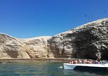 All Inclusive Ballestas Islands and Nazca Lines from Lima