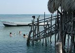 Private Appleton Estate Rum and Pelican Bar Tour from Montego Bay
