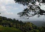 Full-Day Brownsberg Nature Park Tour