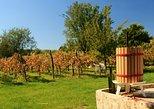 Wine Tour of Etyek from Budapest