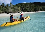 Dominica Shore Excursion: River to Ocean Kayaking Adventure