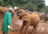 Afrika & Mittlerer Osten - Kenia: Elephant Orphanage and Giraffe Centre in Nairobi