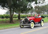 Private Tour: Tucuman Mountains by Vintage Car