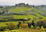 A trip to Tuscany best places and wines: Pisa, Siena, San Gimignano and Chianti