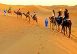 Magical Camel Trek
