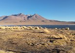 3 Days Tour Uyuni Salt Flats ending in San Pedro de Atacama Chile