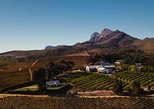 Half-Day Stellenbosch Winelands Tour from Cape Town