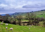 Full-Day Yorkshire Dales Tour from York