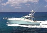 Cozumel Private Luxury Boat Day Tour