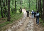 Champa Devi Hill Day Hike