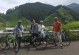 Rental Hybrid Bikes at JR Shizuoka Station (24 gears spots bikes)