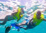Mexico - Baja California Sur: Snorkel at the Aquarium of the World