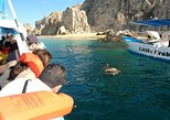Los Cabos Shore Excursion: Cabo Lands End Experience