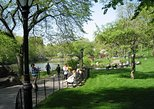 Central Park and Upper East Side Walking Tour
