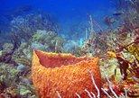 14Days - 16 Dives Scuba Holiday in Grenada Carriacou