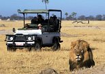 2-Day Camping Safari in Chobe National Park from Victoria Falls