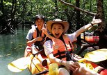 Mangrove Forest Kayaking Tour from Langkawi