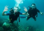 Catalina Island Scuba Diving and Snorkeling Tour from Punta Cana