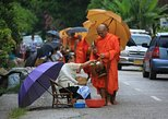 Full Day Alms offering, City Tour and Pak Ou Caves (lunch and dinner included)