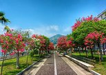 Salerno Private Walking Tour