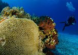 3-Hour Certified Scuba Diving Tour with Two Tanks in Cozumel