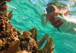 Full-Day Snorkeling Adventure from Cancun and Riviera Maya
