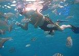 Punta Nizuc Snorkeling Experience in Cancun