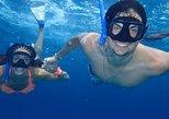 Puerto Morelos Two Reefs Snorkeling Tour