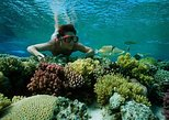 Snorkel Trip from Sharm El-Naga Bay Hurghada