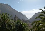 Tenerife Highlights Full-Day Tour