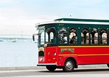 Newport Viking Trolley Tour with The Breakers and Marble House Admission