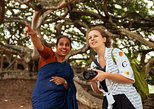 Full Day Charming Private Kandy Tour: Highlights & Hidden Gems