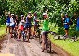 Easy Rarotonga Cycling Tour with Lunch