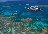 Quicksilver Outer Great Barrier Reef Snorkel Cruise from Port Douglas