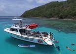 Scuba Dive Tour to Vieques Island