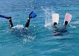 Las Terrenas 2-Tank Scuba Dive for Certified Divers