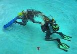 PADI Scuba Diver Course in Punta Cana